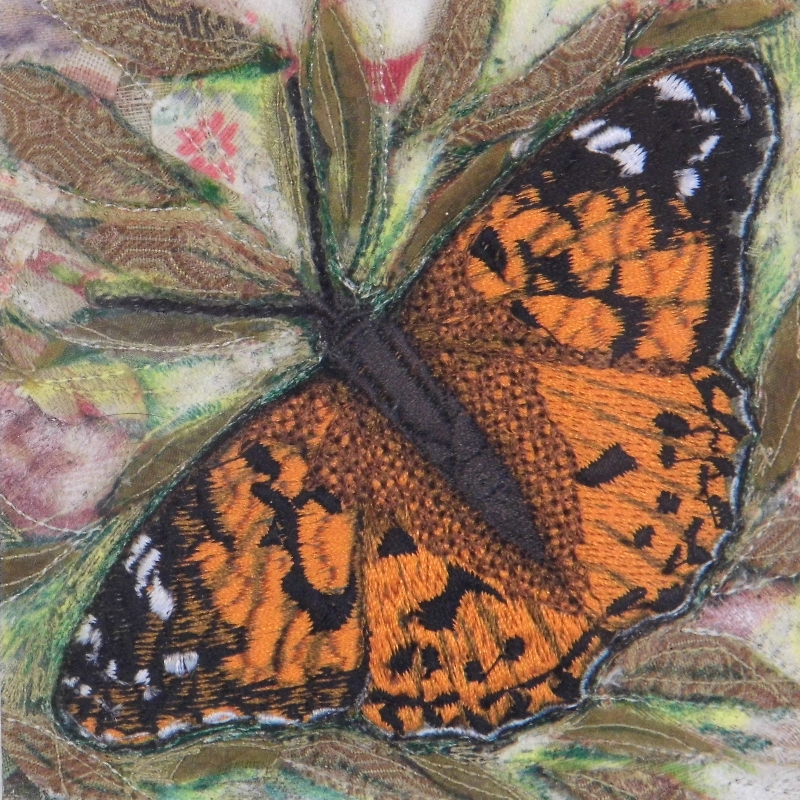 PAINTED LADY MAIN