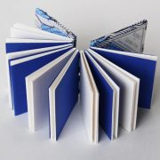 blue and white pages of mini fish open spine book