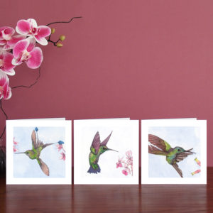set of three watercolour hummingbird cards